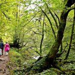 bucolicos paseos por asturias san valentin